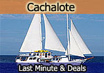 Cachalote motor sailor last minute