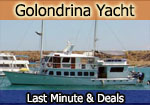 archipell catamaran last minute deal