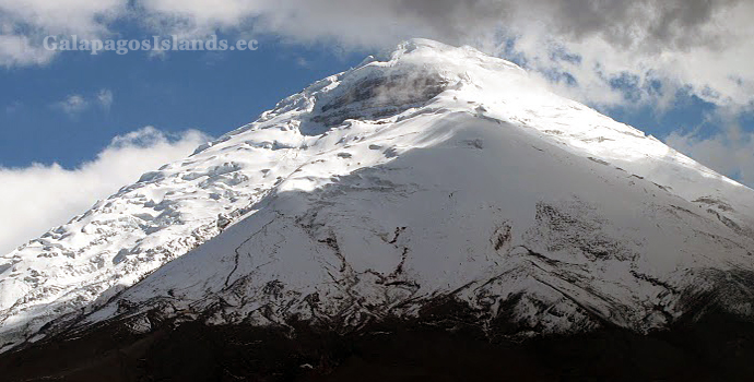 Ecuador tours - Cotopaxi national Park